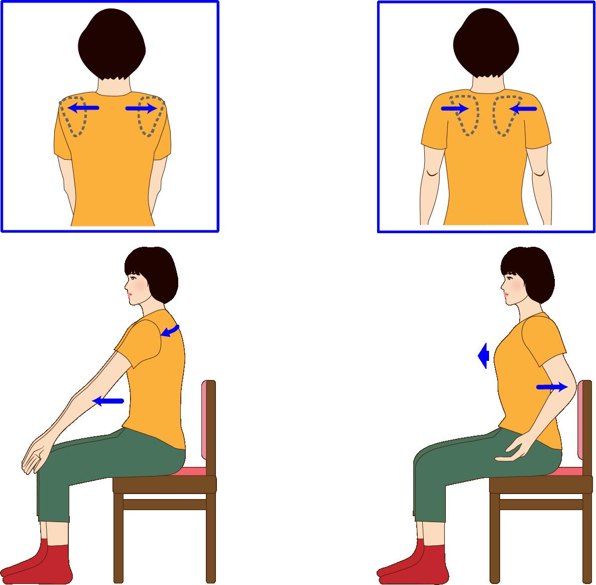 肩甲骨 肩こり予防 背中